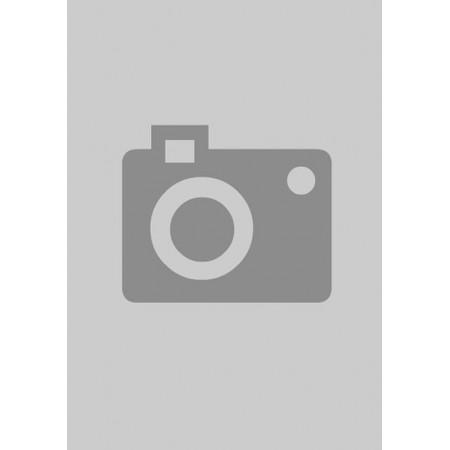 Emblema  Grade Do Laika